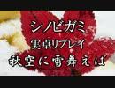 【シノビガミ】秋空に雪舞えば part1【実卓リプレイ】