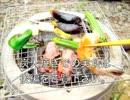 【前編】収穫野菜で一人七輪バーベキュー☆