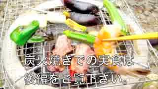 【前編】収穫野菜で一人七輪バーベ