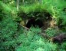 ビビリおじさんが『廃トンネル散策』してみた。その1