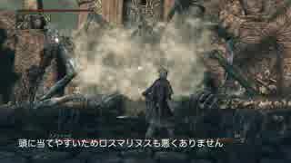 【Bloodborne】レベル120 ビルド別にカンストボス撃破【E.血神 - part04】 thumbnail