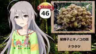 【モバマス】星輝子とキノコの話46 ナラ