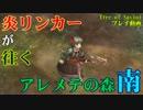 【ToSプレイ動画】炎リンカーが往く、アレメテの森(南)【Tree of Savior】