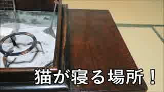江戸長火鉢 紹介編【長火鉢とおっさん1】