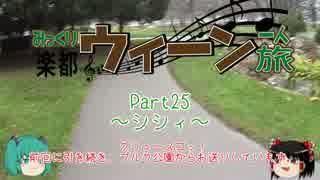 みっくり楽都ウィーン一人旅Part25~シシ