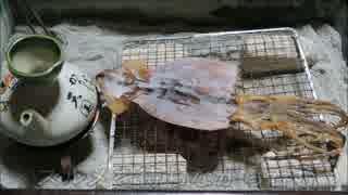 スルメを炙る【長火鉢とおっさん2】