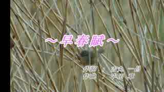 【第七回ボカロクラシカ音楽祭】~ 早春賦 ~ 【指定曲部門】