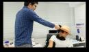 【大阪ファンミ】きにしない動画 【製作者:GARU】