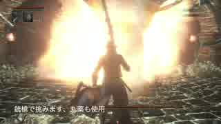 【Bloodborne】レベル120 ビルド別に聖杯全ボス撃破【B.技神 - part05】 thumbnail