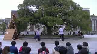 【京大学祭】エンゼルフィッシュ踊ってみた【ひで&さくも】 thumbnail