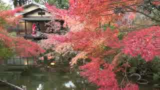 紅葉の京都(2016/11/24・25)