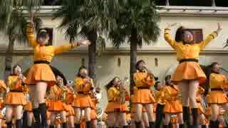 橘 吹奏楽 京都 部 高校