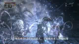 【Bloodborne】レベル120 ビルド別に聖杯全ボス撃破【E.血神 - part06】 thumbnail