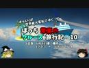 【ゆっくり】クルーズ旅行記 10 UA191