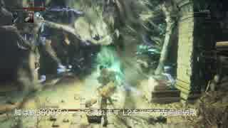 【Bloodborne】レベル120 ビルド別に聖杯全ボス撃破【A.上質 - part09】 thumbnail