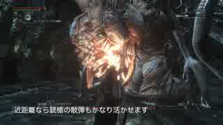 【Bloodborne】レベル120 ビルド別に聖杯全ボス撃破【B.技神 - part09】 thumbnail