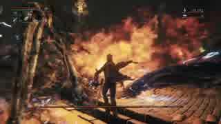 【Bloodborne】レベル120 ビルド別に聖杯全ボス撃破【E.血神 - part09】 thumbnail