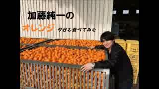 加藤純一のオレンジ今日も食べてみた