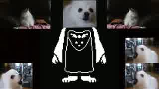 All Gabe The Dog Undertale Songs Compil
