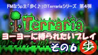 [Terraria] ヨーヨーに縛られたいプレイ