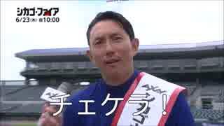 【MLB】2016年メジャーリーグ珍プレー(総集編) thumbnail