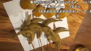 『スマホ生放送 ニコラジ飲みラジ2』6/7【2016/12/19】