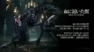 【Bloodborne】トロフィー100%&やり込み