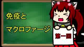 【ゆっくり解説】にゃまと学習帳01【免疫とマクロファージ】