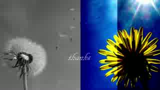 【初音ミク】 花には花を 【オリジナル曲】