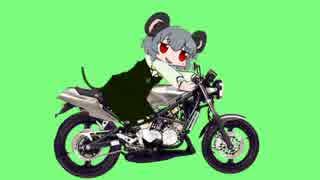 バイクに乗るNYN姉貴GB