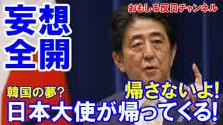 【韓国が勝手にホルホル】 日本大使が帰ってくる!安倍首相に聞いた!