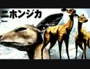 弱肉強食の東京がヤバイ!!【TOKYO JUNGLE 実況】part4