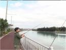 【沖縄の釣り番組】第10回、sacomの「釣り乙!これって釣りで...