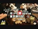 【ゆっくり】東京旅行記 1 いざ東京へ サンライズエクスプレス