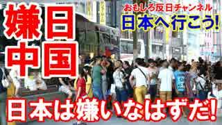 【中国人は日本が嫌いなはずだ】 嫌いだ、