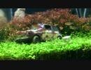 アクアジオラマ 1作目(2/2) ~プラモデルを水槽に沈めてみた