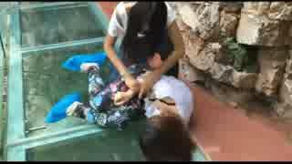 中国 女同士の喧嘩