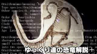 ゆっくり達の恐竜解説+ 第四回