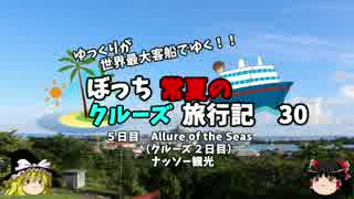 【ゆっくり】クルーズ旅行記 30 ナッ