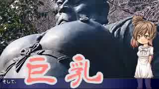 【MT-03】ささらん車載でpart6 山奥の竹寺
