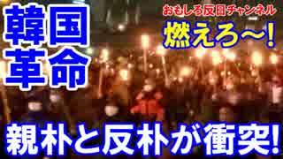 【韓国ロウソクデモは奇麗なデモ】 集団暴行!緊急車妨害!絶好調!