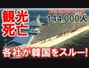 【韓国が本気で絶叫】 大型クルーズ船が韓