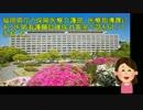 【早乙女会】H29/3/14 福岡県庁で通名の准看護師について行政交渉