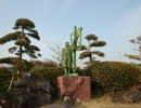 【ゆっくり】徒歩で日本一周part14【茂原→山武】