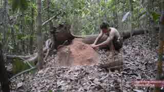 ホモと学ぶシロアリさんのおうちを焼いて作った陶器.Termite clay kiln & pottery
