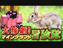 【実況】大惨劇!マインクラフト冒険隊 Part19【Minecraft】
