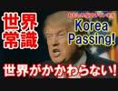 【韓国が現実に狂いそう】 コリアパスが現実化!韓国とかかわらない!