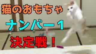 【激カワ】猫はどのおもちゃが好きなのか
