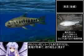 ぬし釣り64 全魚類釣りRTA 3時間59分20秒part6/7