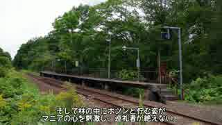 迷列車で行こう 北海道編番外15 ~札沼線